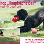 "Workshop ""Hauptsache Ball"""