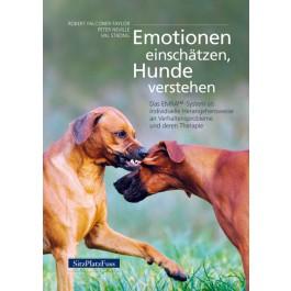 emotionen_einschaetzen_1