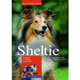 Sheltie_Buch