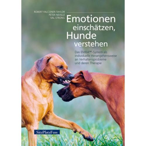 emotionen_einschaetzen_2