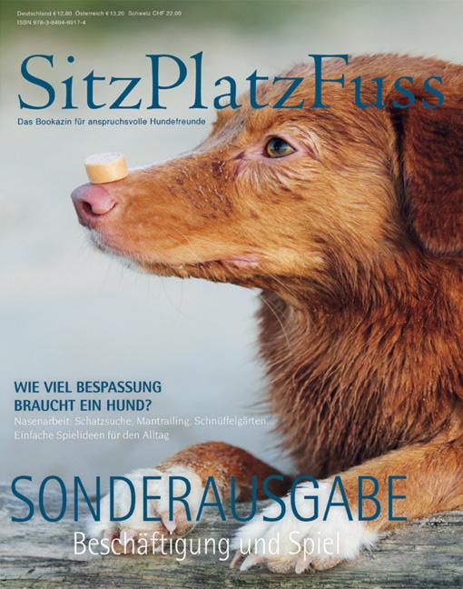 """SitzPlatzFuss-Sonderausgabe """"Bewegung & Spiel"""""""