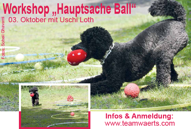 Ball_Workshop