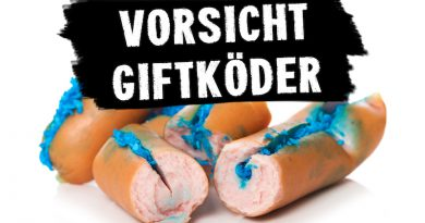 Anti-Giftköder-Training