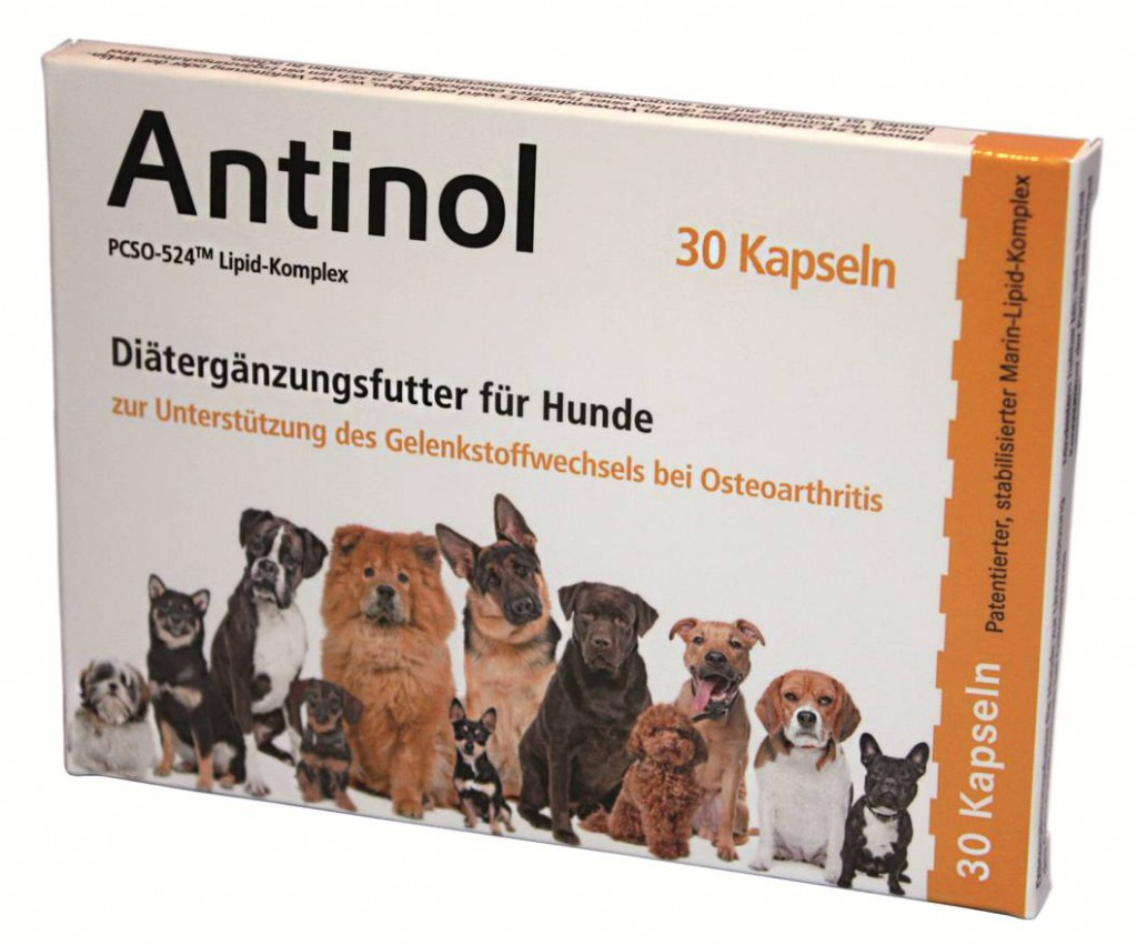 Pharmaworld nicovet Arthrose beim Hund - Antinol