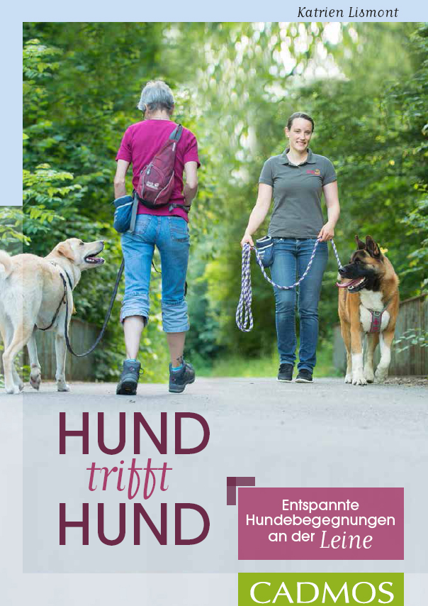 hund_trifft_hund