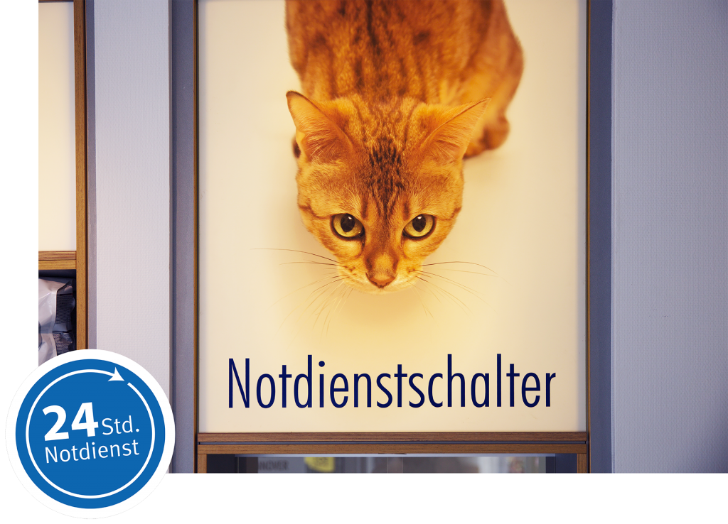 170908_oa-sitzplatzfuss-01 KleintierKlinik Hannover Online-Advertorial KTKH-Notdienstartikel
