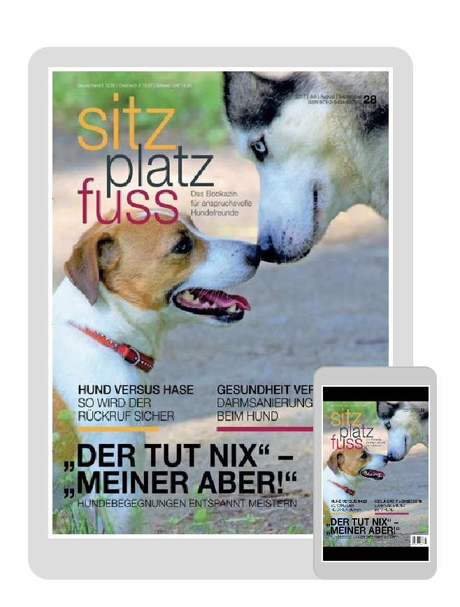 """SitzPlatzFuss"" digital © United-Kiosk.de"
