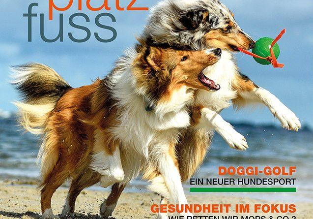 Cover SPF 37