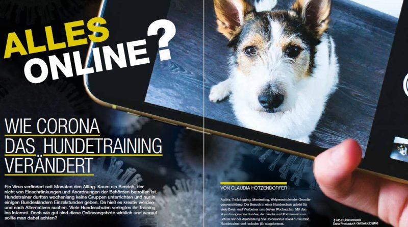 Alles online? Wie Corona das Hundetraining verändert