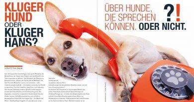 Kluger Hund oder Kluger Hans? – Über Hunde, die sprechen können. Oder nicht.