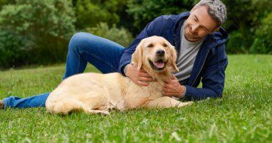 Hundefutter im Trend: Füttern mit Superfoods und Monoprotein